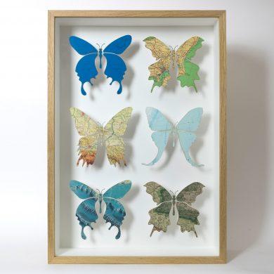 Butterfly artwork in oak box frame