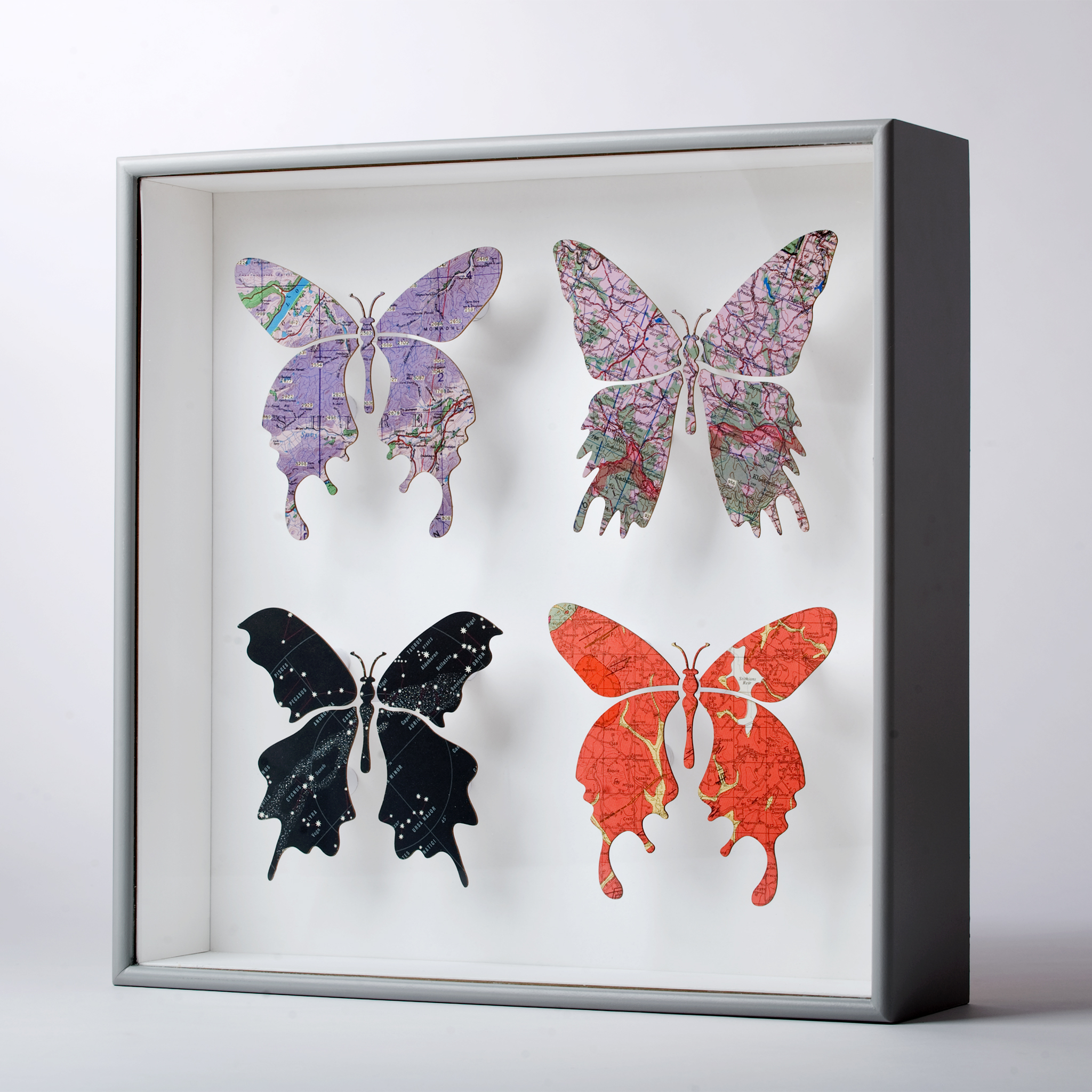 imagesurgery-butterfly-series-2009-archive-2